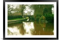 Nature's Reflections, Framed Mounted Print