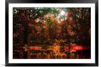 tranquillity, Framed Mounted Print