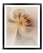 Nights in White Satin, Framed Mounted Print