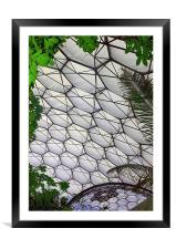 Eden Project Cornwall England, Framed Mounted Print