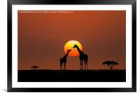 African Sunset, Framed Mounted Print