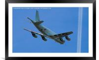Flying High and Keeping Watch, Framed Mounted Print
