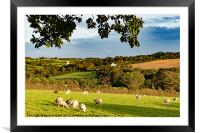 cornish countryside, Framed Mounted Print