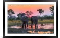 Rendezvous At Sunset, Framed Mounted Print
