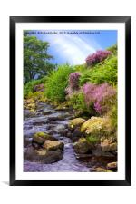 Wheeldale Gill, Framed Mounted Print