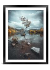 Rich Wiltshire, Framed Mounted Print