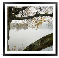 Framed Loch Ard view, Framed Mounted Print