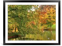 """""""Trees by the lake"""", Framed Mounted Print"""