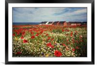 """Poppies at the seaside"", Framed Mounted Print"