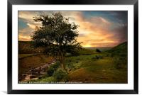 """The Tree"", Framed Mounted Print"