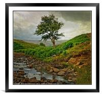 """""""Storm clouds gather at Bollihope"""", Framed Mounted Print"""