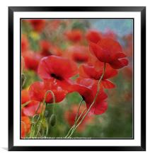 """""""Arty Poppies"""", Framed Mounted Print"""