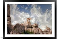 Wild mountain goats - Ibex in El Torcal,  Antequer, Framed Mounted Print