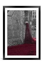 Poppies at the Tower, Framed Mounted Print