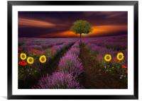 Nature always wears the colors of the spirit.     , Framed Mounted Print