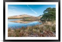 Frost and reflections 2, Framed Mounted Print