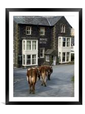 Off for a pint, Framed Mounted Print