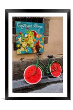 Bicycle with Melon Wheels, Framed Mounted Print