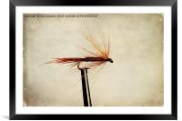 Pheasant Tail Dry Fly, Framed Mounted Print