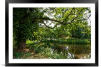 Tree Shaded Pool, Middleton, Warwickshire , Framed Mounted Print