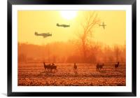 Buzzing the Deer, Framed Mounted Print