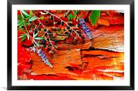 Colorful autumn leaves , Framed Mounted Print