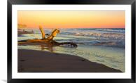Driftwood, Framed Mounted Print