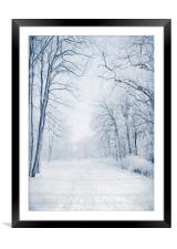 Winter Path, Framed Mounted Print