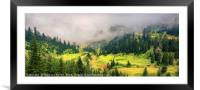 Sunny Valley, Framed Mounted Print