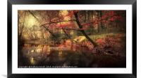 Dreamy Autumn Forest, Framed Mounted Print