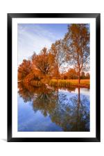 Fall Reflections, Framed Mounted Print