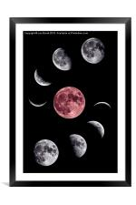 Moon Collage, Framed Mounted Print