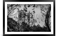 Beautifully Haunting in Mono.........., Framed Mounted Print