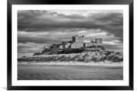 Black and White Beauty, Framed Mounted Print
