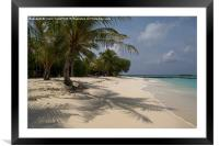Palm lined beach, Framed Mounted Print