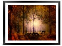 Deers In the woods, Framed Mounted Print