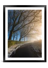 Winter trees, English Peak District, Framed Mounted Print