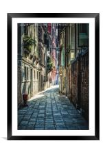 Venice, Framed Mounted Print
