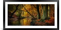 Ousbrough Woods  , Framed Mounted Print