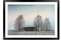 Old Wooden Barn Surrounded By Trees, Framed Mounted Print