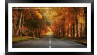 Autumn Drive, Framed Mounted Print
