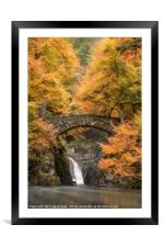 Hermitage Bridge, Framed Mounted Print