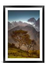 Blaven and Silver Birch Trees, Framed Mounted Print