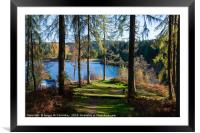 Wild camping in the Trossachs National Park, Framed Mounted Print