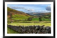 Swaledale At It's Best, Framed Mounted Print