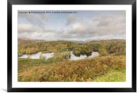 Autumn at Tarn Hows, Framed Mounted Print