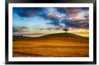 Golden Hour Landscape, Framed Mounted Print