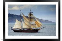 The Tres Hombres Leaving Torbay              , Framed Mounted Print