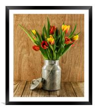 red and yellow tulips on wood, Framed Mounted Print