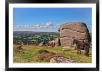 Bell Tor to Widecombe Valley, Framed Mounted Print